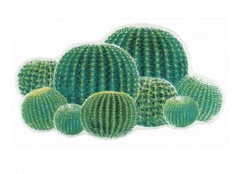 Abyss Habidecor Cactus