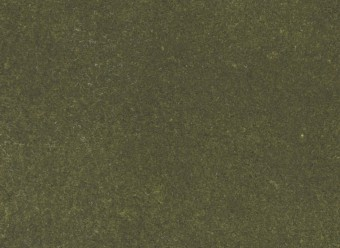 Christian-Fischbacher-Teppich-En-Vogue-Premium-Merinowolle-moosgrün