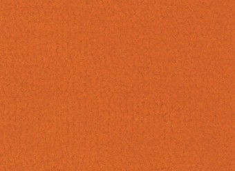 Christian-Fischbacher-Teppich-En-Vogue-Premium-Merinowolle-orange